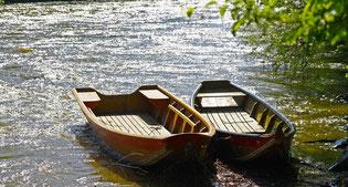 barque marais poitevin par ma petite maison gite rural venise verte
