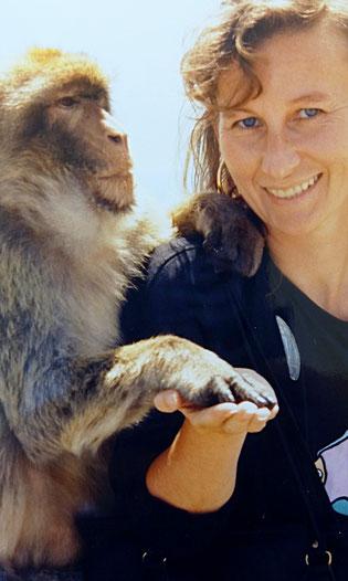 Krafttier-Meditation - Meine tierischen Lehrmeister