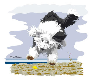 disegno-drawing-bobtail-cane-dog-digital-art-jumping-salto-palla-spiaggia-ball-beach