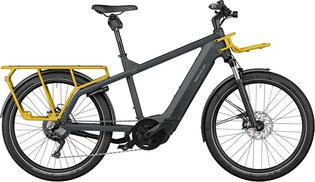 Riese und Müller Cargo e-Bike / Lastenfahrrad mit Elektromotor Multicharger