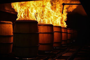 """""""los secretos del roble"""",""""barriles de roble"""",""""whisky"""",""""whiskey"""",""""ron"""""""