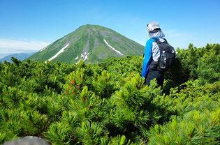 オプタテシケ山を北側から