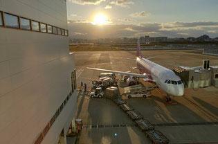 福岡空港のピーチ