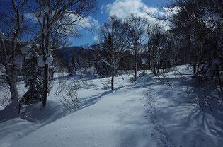 雪山ハイク