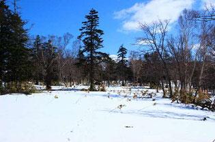 残雪期の山