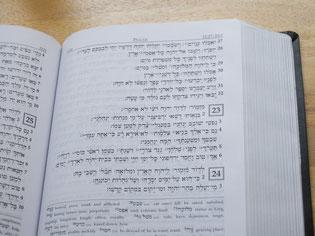 詩篇23篇