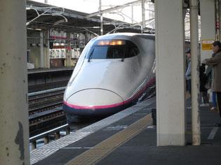 お馴染み東北新幹線「やまびこ」です
