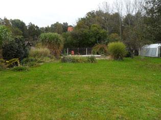 viel Rasen im Garten