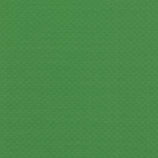 STG Vert clair
