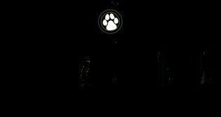 Hundeschule Vanessa in 5070 Frick