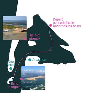 Balade Bassin d'Arcachon