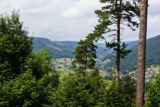 Schwarzwald bei Baiersbronn. Wanderhimmel. Foto Rainer Sturm