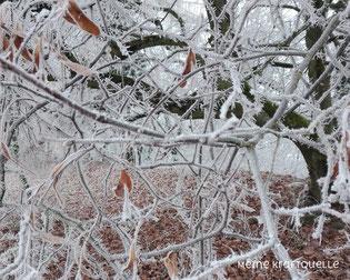 Kraftquelle im Januar, ruhiger Monat, Ruhe nach dem Sturm