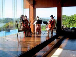 披露宴の余興で人気の弦楽四重奏の生演奏