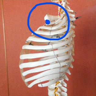肩こり解消体操の写真