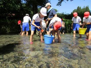 「砂鉄川」にて川砂鉄を採取する子どもたち