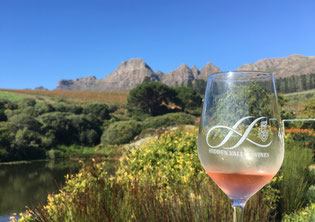 Private wine tour, Stellenbosch, Cape Winelands
