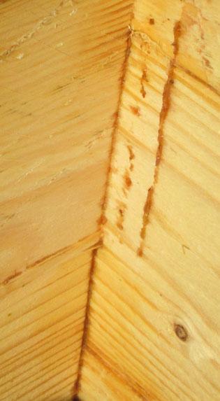 Diese neu gebaute Holzzarge diente nur wenige Wochen einem kleinen Bienenvolk als Behausung: Man kann schön erkennen, wie der Schlitz in der Ecke von den Bienen zugeschmiert wurde und auch rechts oben Propolis-Reste kleben, wo ein Rähmchen anstieß.