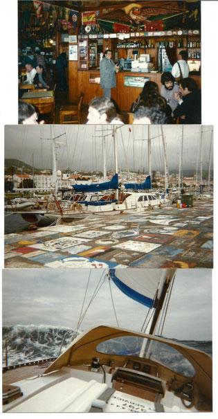 """Horta auf den Azoren, die berühmten Gemälde auf dem Kai und """"Peter´s Sportscafé"""" darf nicht fehlen"""