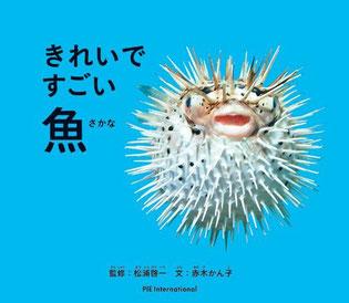 パイインターナショナル きれいですごい魚