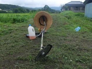 久しぶりにファーム&農道の草刈りを行いました!