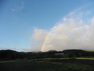 ウオッチイン宮城へ投稿した今朝の写真です!