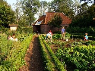 Kinder helfen im Bauerngarten des NABU Woldenhofs