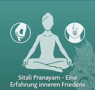 Yoga Atemübung Sitali Pranayama - Quelle: www.yogitea.com