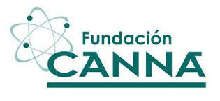 analisis de porcentaje de thc de la variedad de cannabis critical raskera realizado por la fundación Canna