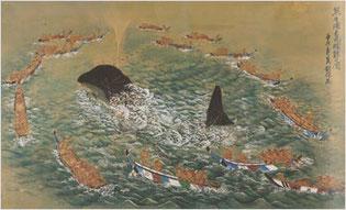 熊野捕鯨の図
