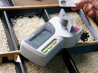 玄米検査。水分15%以下が良好