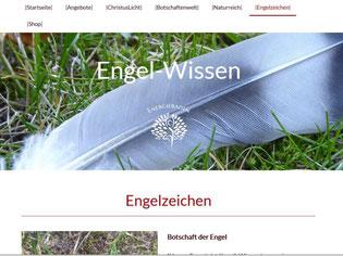 """Webseite von engel-wissen.de mit dem Logo """"Energiebaden"""" auf einer Feder"""