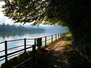 sonniger Uferweg in Buchberg am Rhein