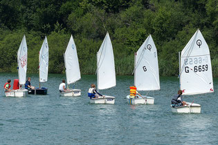 Regatta der Optimisten