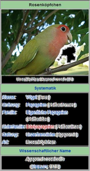 Bild und Text: Wikipedia