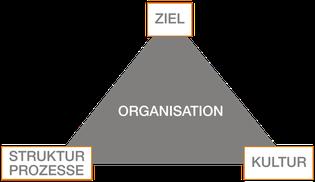 Drei Parameter wirken abhängig voneinander auf die Organisation ein.
