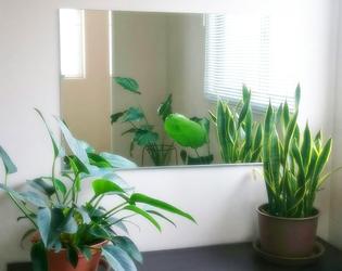 岐阜の鏡とガラスの専門店