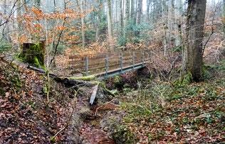 die neue Brücke über das Wolftobel