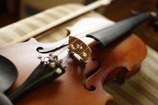 写真 「バイオリン」