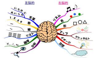 マインドマップ 「右脳と左脳」