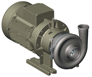 Kreiselpumpe Zentrifugalpumpe von CSF