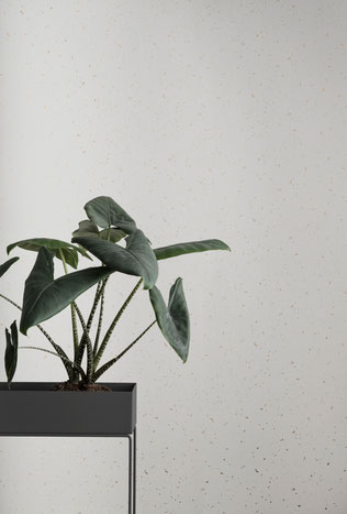 Plant box, Ferm living, deko, Pflanzen, Bar