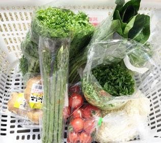 地元の農家さんの新鮮な野菜