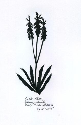 Scherenschnitt Aloe Vera