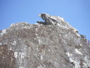 鷲の峯・インド霊鷲山