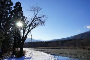 池の周りを囲む雪の小路。たくさんの足跡が思い出を刻む