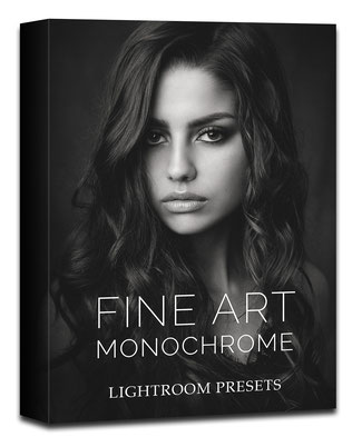 10 award winning Fine Art Monochrome presets for Lightroom