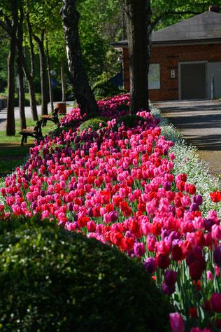 Bayreuth, Festspielpark (-gelände)