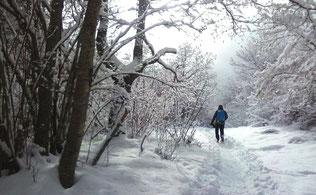 randonnée famille raquettes journée ariege pyrennees babeth