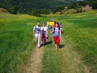 Passeggiate e trekking nelle verdi colline